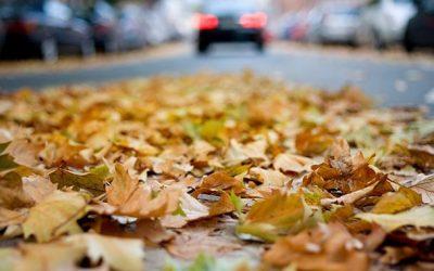 Preparar el coche para el otoño.